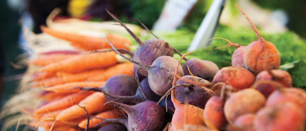 Inclua raízes em suas refeições | Mikami Hortifruti e Produtos  Orientais