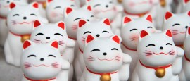Manekineko – O Gato da Sorte Mikami Produtos Hortifruti e Orientais