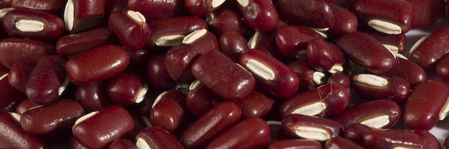 Feijão azuki ajuda a regular o excesso de açúcar no sangue