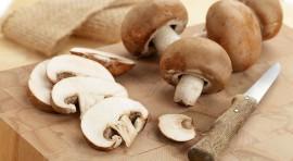 A ascensão dos cogumelos: benefícios e como escolher e usar | Mikami Orientais